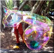 Large Bubble Picture